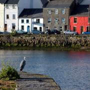 Galway City (Galway)