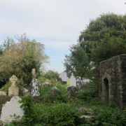 Headstones and overgrowth at Marshalstown graveyard