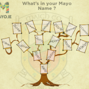 Researching your Mayo ancestors