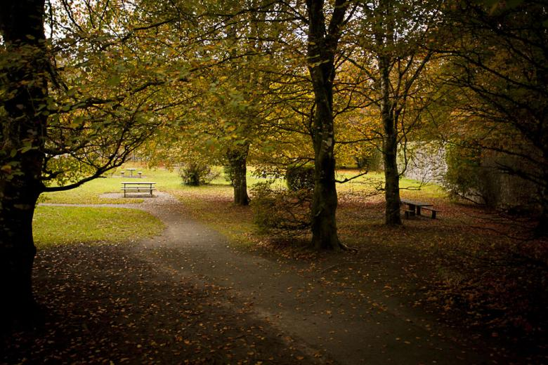 Coole park Gort County Galway Ireland