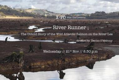 RIVER RUNNER ; THE UNTOLD STORY of the WILD ATLANTIC SALMON on the RIVER LEE